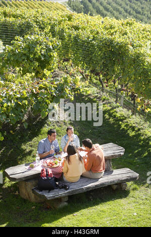 Couples, two, hiking, recreation, vineyard, laid table, South Tyrol, Brixen, Italy, - Stock Photo