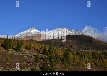 Spain, Canary islands, Tenerife, Parque Nacional del Teide, Pico Viejo, snowy, - Stock Photo