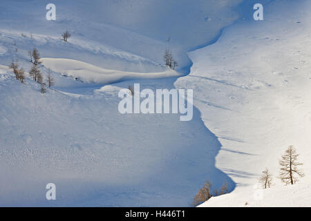 Austria, Salzburg, Rauristal, Hohe Tauern, winter scenery, - Stock Photo
