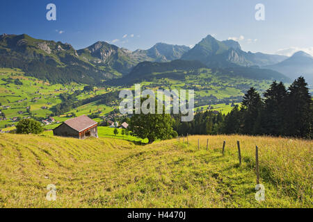Switzerland, St. Gallen, Ober Toggenburg, alpine grassland, - Stock Photo