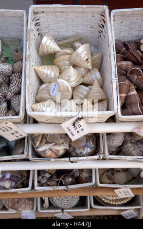 Souvenirs, mussels, - Stock Photo