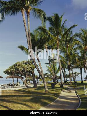 Maskarenen, island Mauritius, west coast, Flic en Flac, beach, palms, destination, heaven, vacation, palm beach, tourism, rest, recreation, deck chairs, hotel beach, way, meadow,