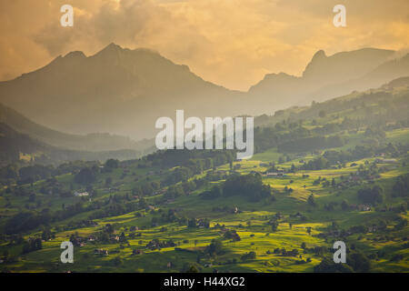 Switzerland, St. Gallen, Ober Toggenburg, alpine grassland, evening light, - Stock Photo
