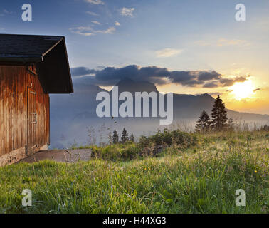 Switzerland, St. Gallen, Ober Toggenburg, hut, alpine grassland, - Stock Photo