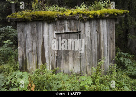 Austria, Montafon, wooden hut, covered, old, weather-beaten, - Stock Photo