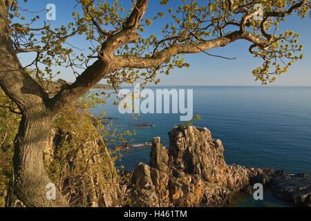 Denmark, rocky coast island of Bornholm, - Stock Photo