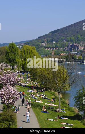 View at the Neckar, meadows with people, towpath, Old Town, Heidelberg, Baden-Wurttemberg, Germany, - Stock Photo