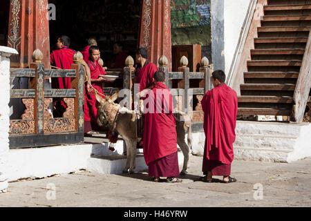 Kingdom Bhutan, monks in the Trongsa Dzong, - Stock Photo