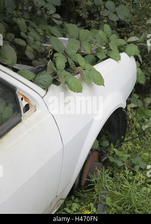 Wrecked car, overgrown by nature, detail, - Stock Photo