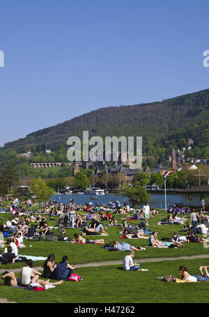 The Neckar, meadows with people, towpath, old town, Heidelberg, Baden-Württemberg, Germany, - Stock Photo