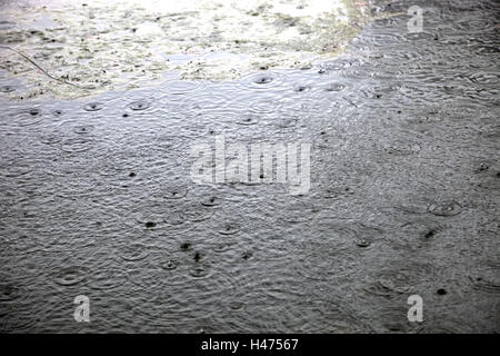 Lake, rain, outside, pond, waters, weather, circles, drops water, raindrops, water surface, nature, - Stock Photo