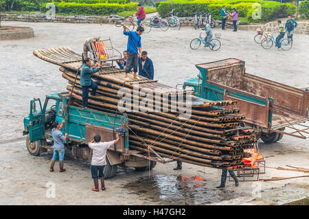 Chinese workers unload bamboo rafts on the banks of the Li river, Yangshuo, China. - Stock Photo