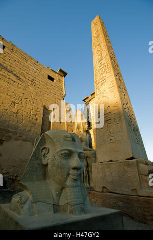 Egypt, Luxor, Luxor temple, statue head Ramses II and obelisk in front of the pylon, - Stock Photo