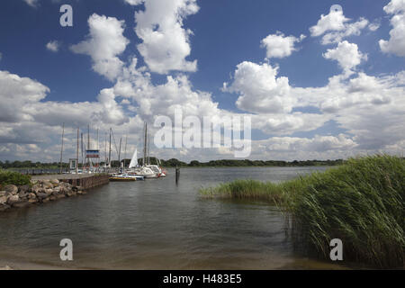 Germany, Schleswig - Holstein, region Angeln, Schlei at Ulsnis, - Stock Photo