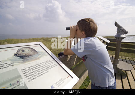 Island Langeoog, national park mud flats, nature reserve, observation ward, boy, binoculars, - Stock Photo