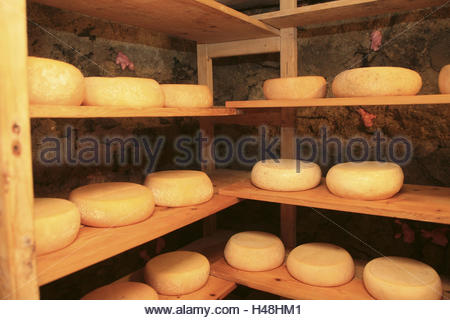 Europe, Austria, Salzburg country, Salzburg Saalachtal, white brook with Lofer, Kammerlinger alps, cheese loaves, - Stock Photo
