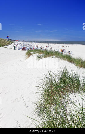 Dunes, beach oat, beach,Baltrum (island), - Stock Photo