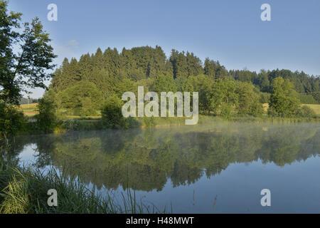 Scenery, mirroring, lake, haze, fog, - Stock Photo