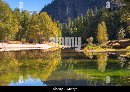 Colourful autumn trees flank the River Merced in Yosemite Valley, California, USA. Autumn (October) 2014. - Stock Photo