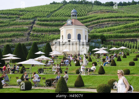 Castle Wackerbarth, baroque garden, vineyards, Radebeul, Saxony, Germany, - Stock Photo