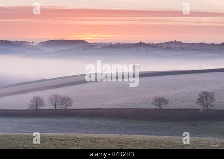 Mist covered frosty countryside near Morchard Bishop, Devon, England. Winter (March) 2014. - Stock Photo