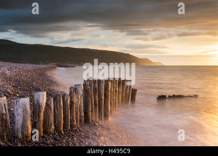 Weathered wooden posts on Bossington Beach, Exmoor National Park, Somerset, England. Summer (July) 2013. - Stock Photo