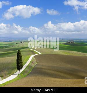 Italy, Tuscany, province Siena, Crete Senesi, - Stock Photo