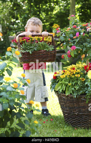 Small child, boy with basket of flowers in the garden, sunhat, Spanish flag, Dahlia, rudbeckia, gazania, - Stock Photo