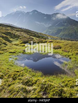 View from Oberberg (mountain) against Hochfeiler (mountain), 3510 m, mountain lake, Pfitsch valley, South Tirol, - Stock Photo