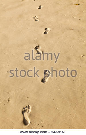 Footprints in wet sand, - Stock Photo