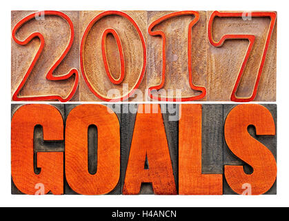 2017 goals banner - New Year resolution concept - isolated text in vintage letterpress wood type printing blocks - Stock Photo