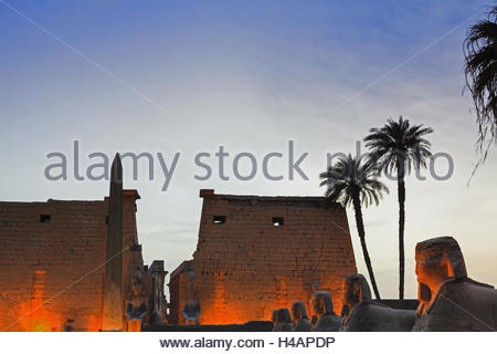 Avenue of Sphinxes in front of the entrance of the illuminated Luxor temple, in the evening, Egypt, Upper Egypt, - Stock Photo