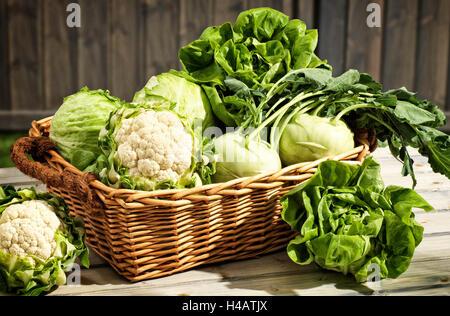 Vegetable basket on table, garden - Stock Photo