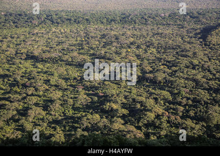 Arba Minch, area of Semien Omo, part of the region of the southern nations, Ethiopia Nechisar national park - Stock Photo