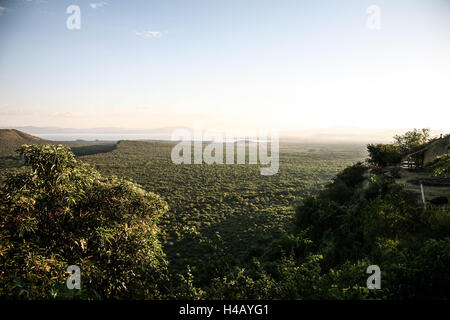 Arba Minch, area of Semien Omo, part of the region of the southern nations, Ethiopia Nechisar national park with - Stock Photo