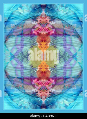 ornament from flower photographs - Stock Photo