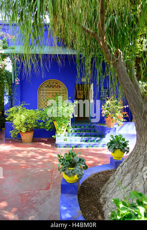 Africa morocco marrakech jardin majorelle created by for Jardin yves saint laurent maroc