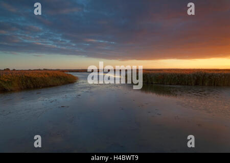 Evening light in the Bodstedter Bodden with Zingst in the evening, Western Pomerania Lagoon Area National Park, - Stock Photo