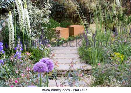 Chelsea flower show white and purple alliums flowers at the jacques stock photo royalty free - Royal flower show ...