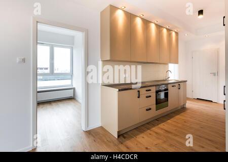 New Apartment Empty Room With Domestic Kitchen Interior Design