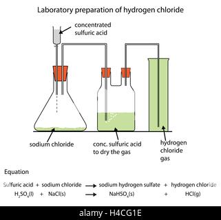 Labelled diagram for laboratory preparation of hydrogen from zinc fully labelled diagram of the laboratory preparation of hydrogen chloride gas stock photo ccuart Images