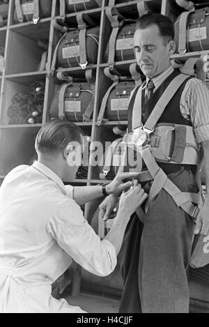Anpassung des Gurtzeugs eines Fallschirms in einer Fallschirm Näherei, Deutschland 1940er Jahre. Checking the harness - Stock Photo