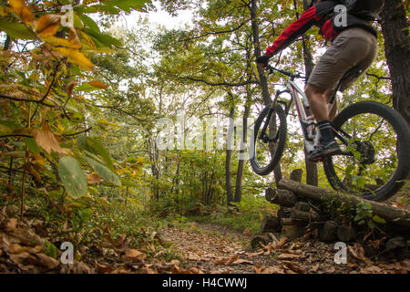 Mountain Bike Jump biker in the woods of the Serra Morenica woodland hill and trails in Piemonte Italy. Mountain - Stock Photo