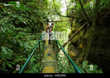 Travelling path about the somersault Th Cabrito, waterfall on Sao Miguel, the Azores, Portugal - Stock Photo