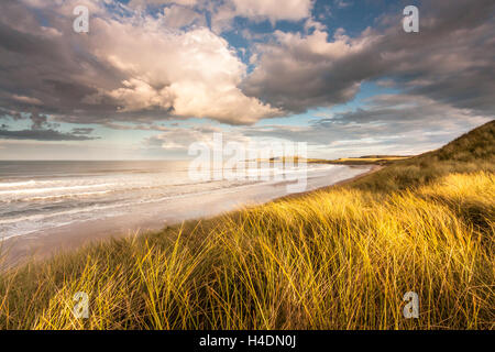 Embleton Bay looking towards the ruins of Dunstanburgh Castle in the evening from the marram grass covered sand - Stock Photo