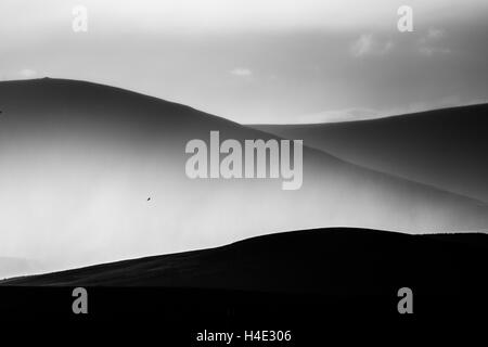Distant Cheviot hills during a rain storm with a single bird flying high above the valley, silhouetted hills in - Stock Photo