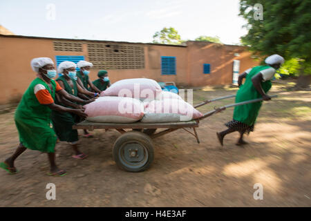 Bags of shea nuts are unloaded at a warehouse for shea butter production in Réo Burkina Faso, West Africa. - Stock Photo