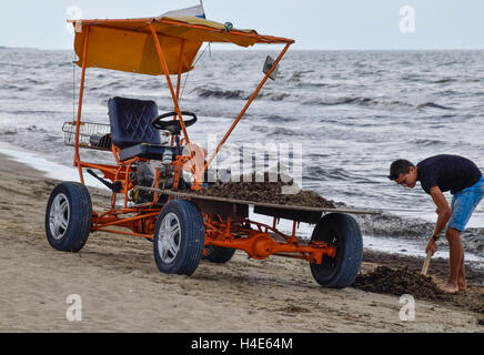 The car for garbage collection from the beach. Cleaning on the beach, clean beach from mud and waste. - Stock Photo