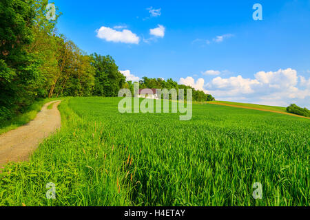 Road to house and green field in farming landscape of Burgenland, Austria - Stock Photo