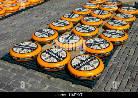 Rounds of Dutch Beemster Cheese, Cheese Market, Alkmaar, The Netherlands - Stock Photo